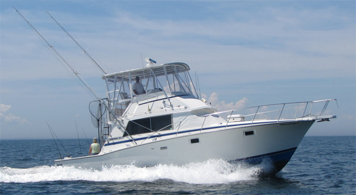 Connecticut charter fishing marlintini sportfishing inc for Ct fishing charters